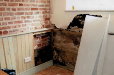 Thanet Timber & Damp - Rising Damp