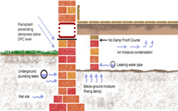 Damp proof course installation-Rising/Penetrative Damp